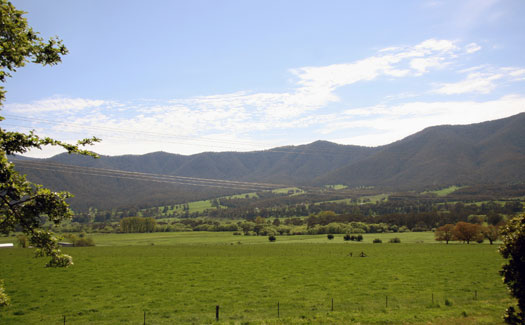 View of Kiewa Valley